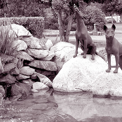 Dingo Fountain in the grounds of the Wondai Regional Art Gallery